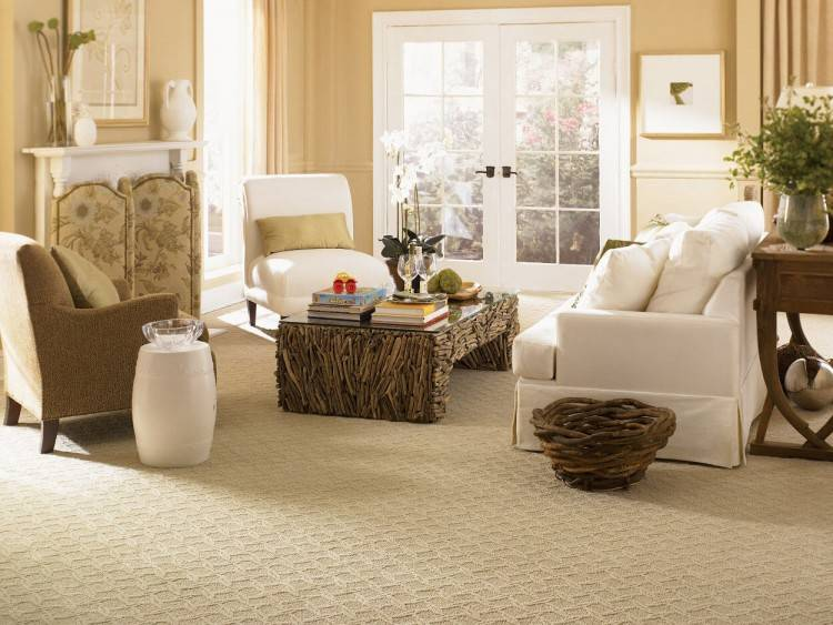 If you want to get your carpets cleaned in the safest way possible, you should choose Healthy Clean Inc